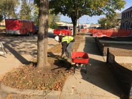 ERRS contractor digging around tree on 52nd street