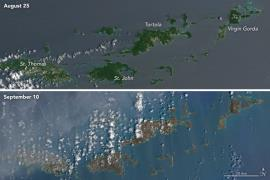 The Virgin Islands before and after Hurricane Irma hit. (NASA Earth Observatory)