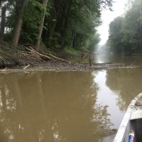 Crews assess drift wood and log jams for floating oil