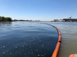 Oil gathered in boom at the confluence of Tucker Bayou and the Houston Ship Channel, downstream of ITC.