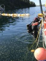EPA contracted diver enters the water to begin inspection of submerged drums.