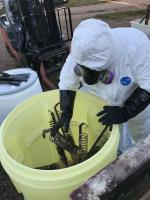 EPA ERRS contractor removing coils form the tanks that have been encapsulated with chemical waste crystals.<br />Date Taken: 9/21/2019<br />Category: Site Photo<br />Latitude: 44.1368166666667<br />Longitude: -103.132988888889<br />Tags: