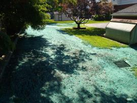 Completed hydroseeding at home 425