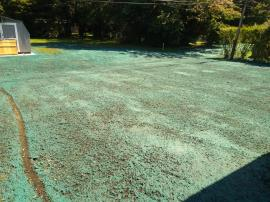 Completed hydroseeding at home 429
