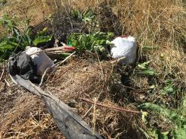 Contaminated garbage bags disposed on site in yard waste burn pile.