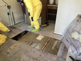 ERRS removing contaminated subfloor boards.