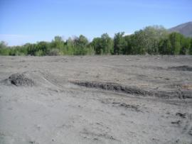 Tailings pile prior to removal action.