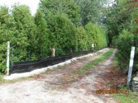 The improved site access road, with garden and filter fabric fencing.