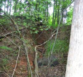 Eroded ravine with exposed drum.