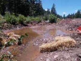 Overview of impacted stream after a rain event