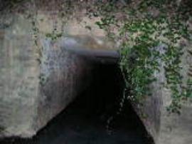 view of box culvert under Lake Forrest Drive looking upstream (easterly)