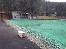 Retention area the day after hydroseeding.