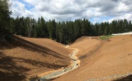 Channel has been constructed, soils have been amended with top soil and mulch. Native vegetation is being planted and woody debris placed on upland slopes in the background.