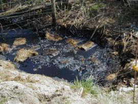 Oil at SW Outfall
