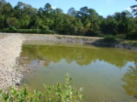Retention pond after restoration.