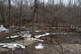 View of where stream discharges into pond<br />Date Taken: 3/25/2014<br />Category: Site Photo<br />Latitude: <br />Longitude: <br />Tags: