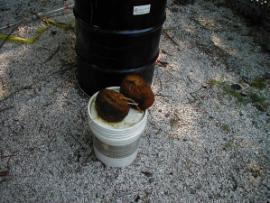 oil saturating sorbent material placed in manhole on plant property